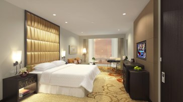 mnlsi-king-room-6121-hor-wide