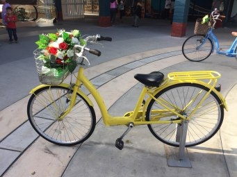 This bicycle is popular for both millennials and other generations.